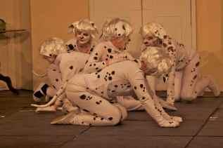 Dalmatians9